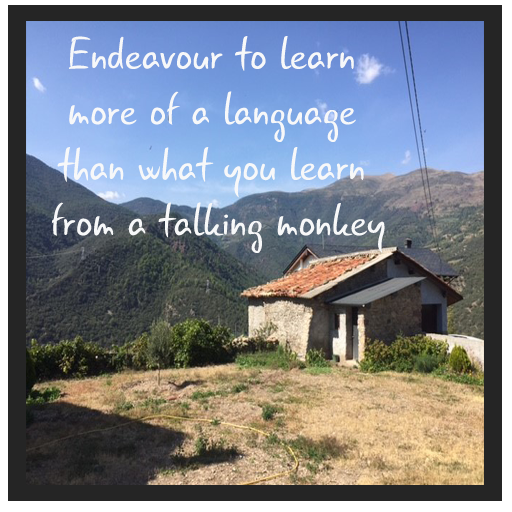 Endeavour to learn more of a language than what you learn from a talking monkey